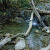 11-17-10  A Stream Runs Through It